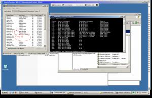 RAT Remote Process View