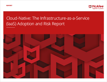 Infrastructure-as-a-Service Adoption (IaaS) and Risk Report
