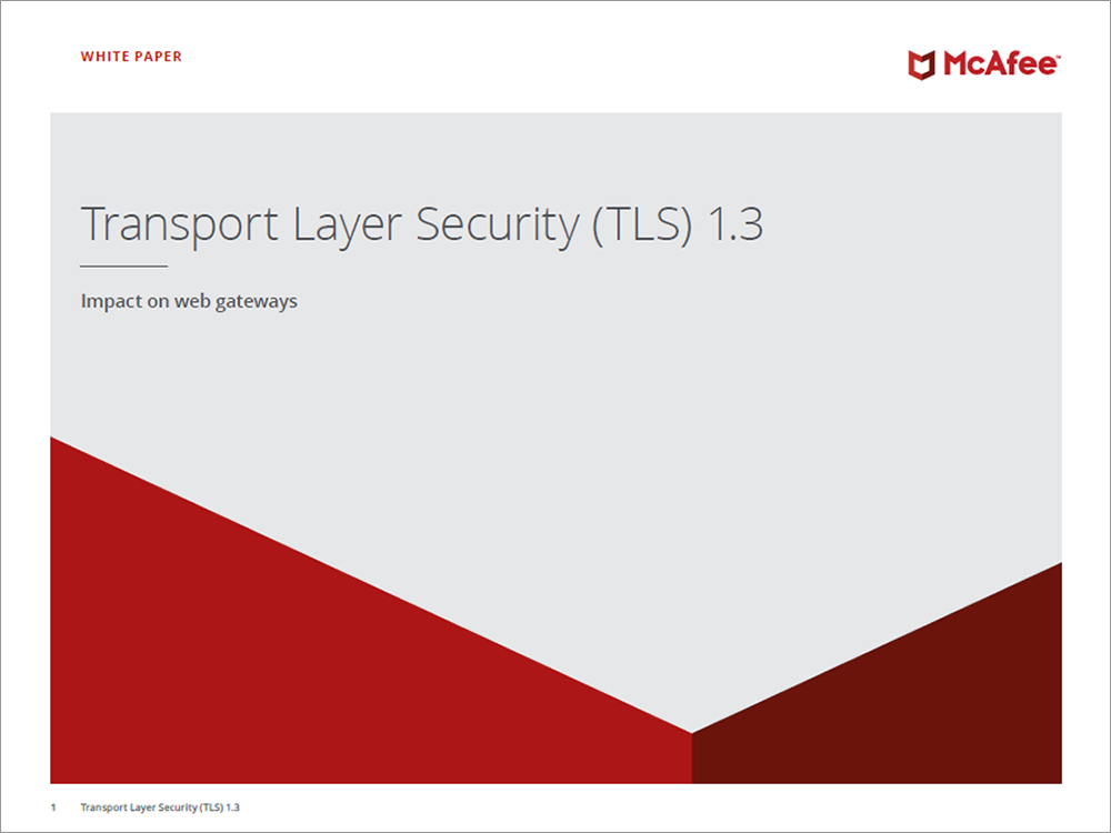 Transport Layer Security Paper