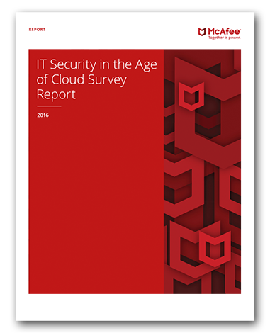 IT Security in the Age of Cloud Survey Report